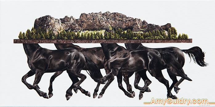 Amy Guidry_horses