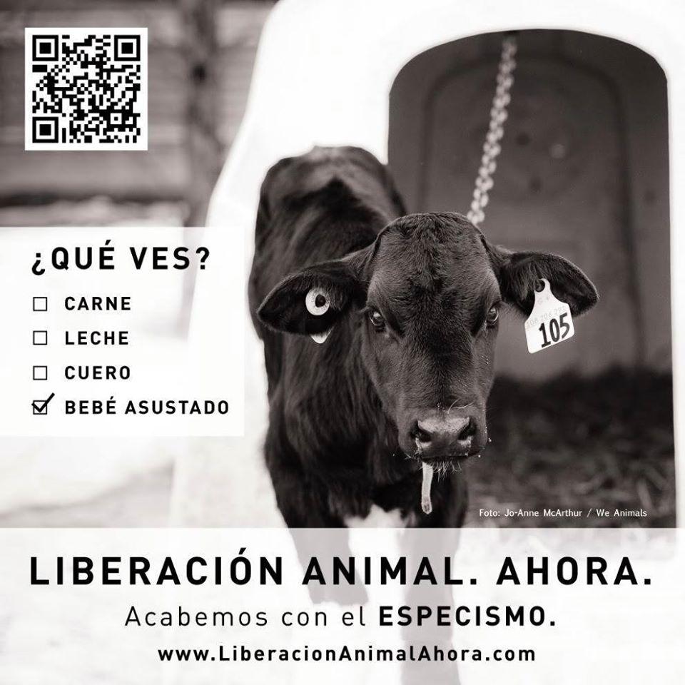 img_metro_espanha_3