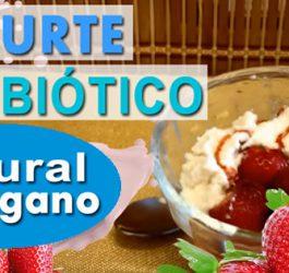 Aprenda como fazer Iogurte Vegano natural e barato